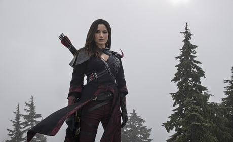 Snow Queen - Arrow Season 3 Episode 9