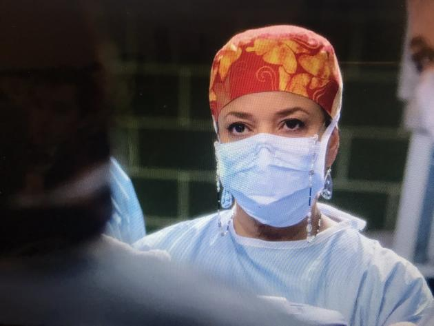 greys anatomy season 10 episode guide