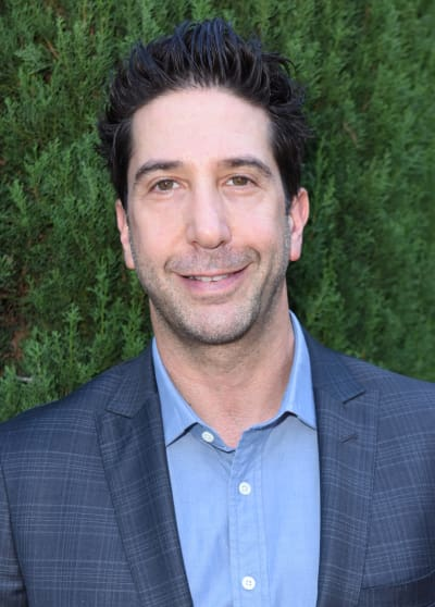 David Schwimmer Attends Event