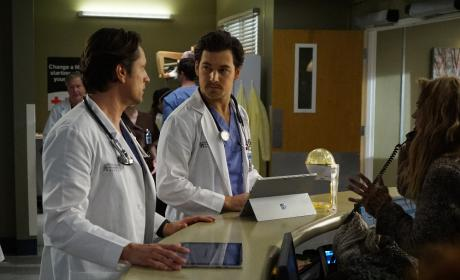 McHandsome 1 and McHandsome 2 - Grey's Anatomy Season 13 Episode 14