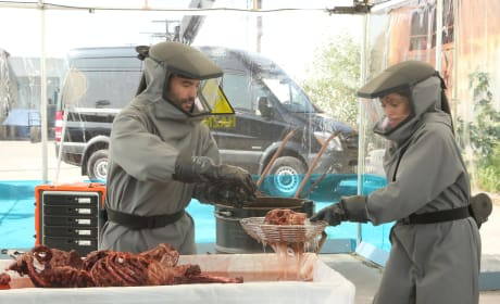 Cam and Feuntes are Suited Up - Bones Season 10 Episode 18
