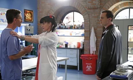 The Baby Shower - NCIS Season 12 Episode 13