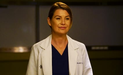ABC Season Finale Spoilers: How Will Grey's Anatomy and Scandal Conclude?