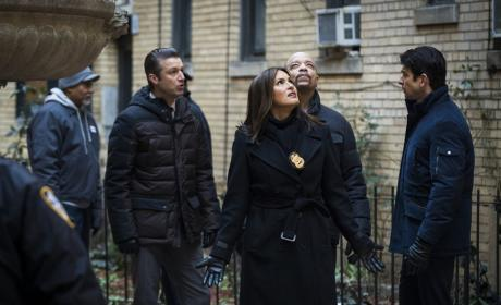 The Neighbors - Law & Order: SVU