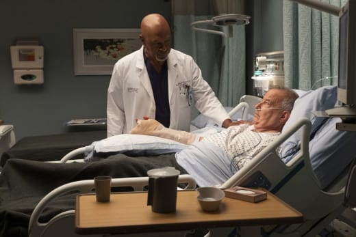 TV Ratings Report: Grey's Anatomy Dips, Station 19 Returns ...