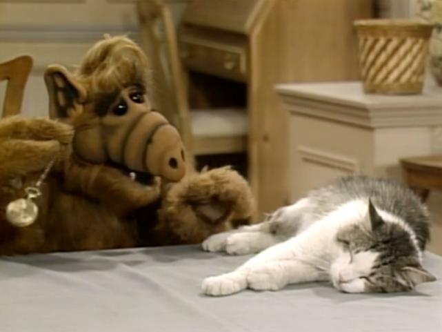 Lucky the Cat - Alf