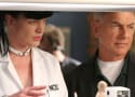 NCIS Alum Pauley Perrette Was Assaulted by Mark Harmon, Report Alleges