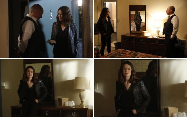 Liz finds red the blacklist season 4 episode 22