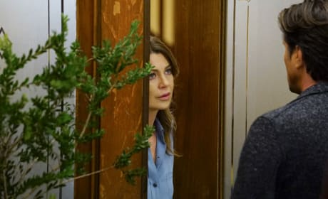 Who's There? - Grey's Anatomy Season 13 Episode 19