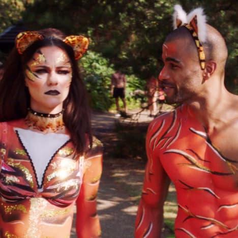 The Tiger Run - The Royals