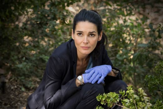 Missing Evidence - Rizzoli & Isles