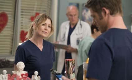 Ellen Pompeo Teases New Favorite Couple as Grey's Anatomy Returns to Production