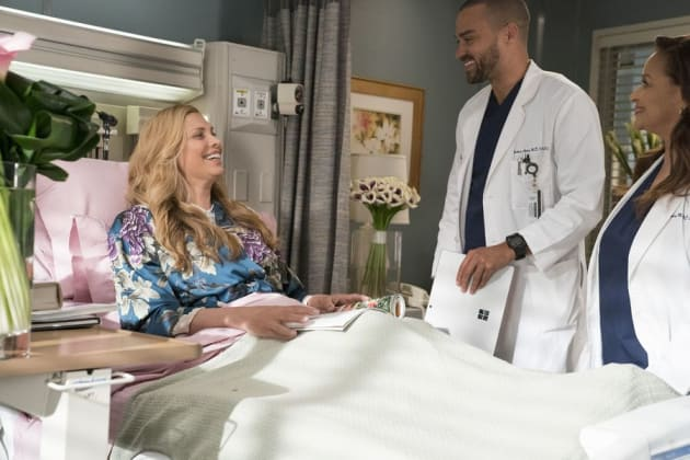 Watch Grey\'s Anatomy Online: Season 14 Episode 16 - TV Fanatic