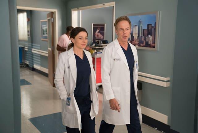 Watch Grey Anatomy Online Watch Series