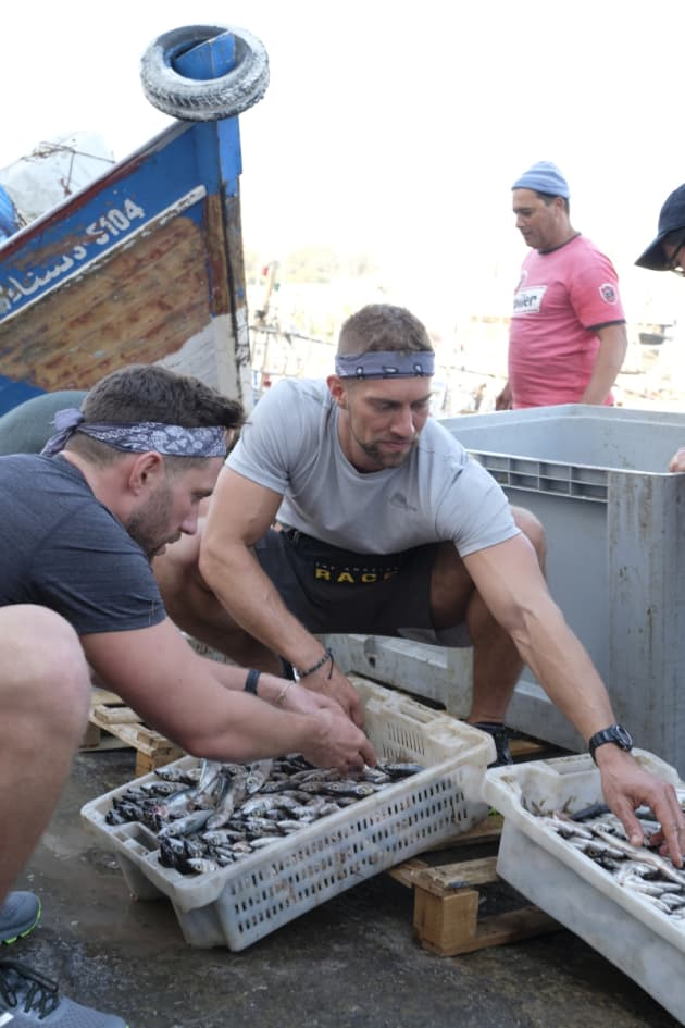 Sorting Fish - The Amazing Race