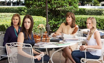 Dallas Review: Fox In the Hen House