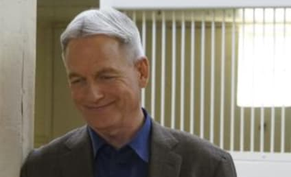 Watch NCIS Online: Season 14 Episode 22
