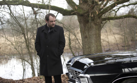 Admiring the Impala