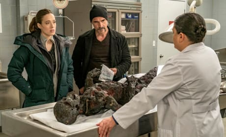 Looking At The Body - Chicago PD Season 4 Episode 14