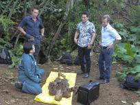 Hawaii Five-0 Season 6 Episode 1