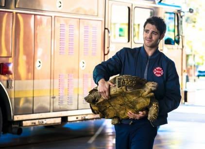 Watch Chicago Fire Season 4 Episode 8 Online