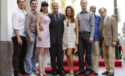 NCIS Cast Speaks on Season 10, Characters, Each Other