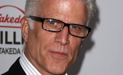 Ted Danson Takes Over on CSI