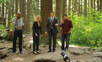 Psych Review: The Words