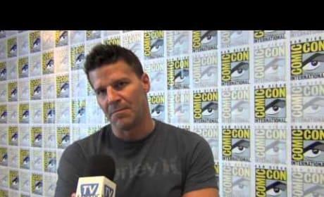 David Boreanaz Teases Bones Season 9