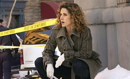 "CSI: NY Reveals ""Noble Exit"" for Stella Bonasera"