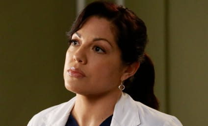 Grey's Anatomy: Did CBS Shut Down Sara Ramirez Return?