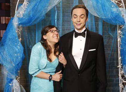 Watch The Big Bang Theory Season 8 Episode 8 Online