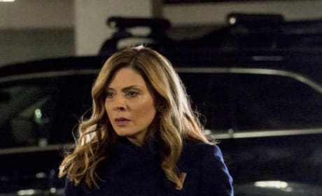 Nikki Staines Returns - Law & Order: SVU Season 20 Episode 24