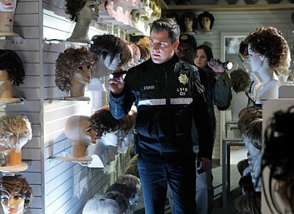 Watch CSI Season 12 Episode 13 Online