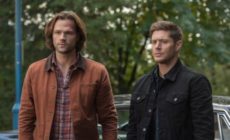 Confused -- Supernatural Season 13 Episode 8