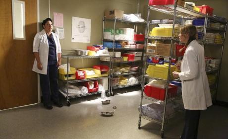 In Hiding - Grey's Anatomy Season 11 Episode 5