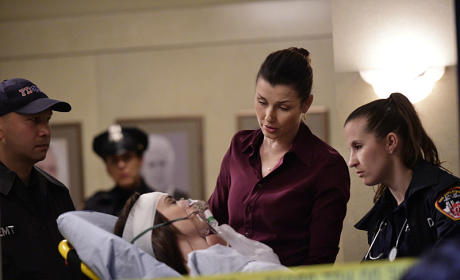 Erin Is Shaken - Blue Bloods
