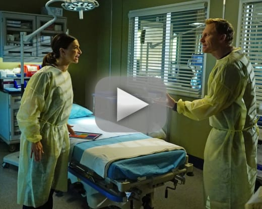 Watch Grey\'s Anatomy Online: Season 13 Episode 17 - TV Fanatic