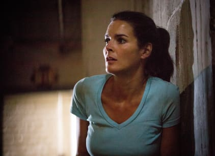 Watch Rizzoli & Isles Season 5 Episode 8 Online