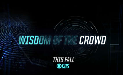 Wisdom of the Crowd First Look: Crowd Sourced Crime Solving