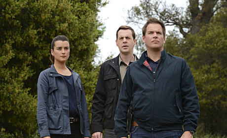 Tony, Tim and Ziva