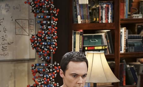 Oh, Sheldon - The Big Bang Theory Season 10 Episode 9