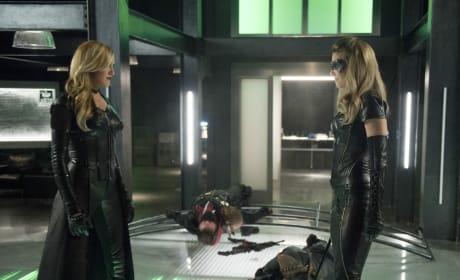 Black Siren Vs Black Canary - Arrow
