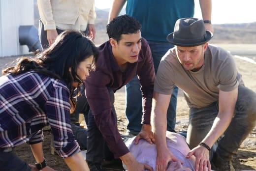 An Unusual Solution - Scorpion Season 3 Episode 12