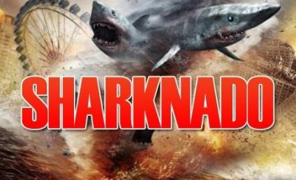 Sharknado 2 Cast: Who's In?!?