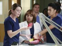 Grey's Anatomy Season 11 Episode 10