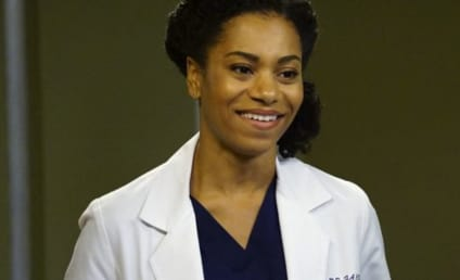 Watch Grey's Anatomy Online: Season 13 Episode 5