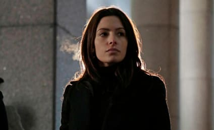 Sarah Shahi Promoted to Series Regular on Person of Interest