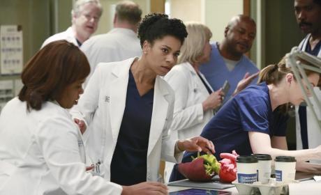 Maggie at Work - Grey's Anatomy Season 11 Episode 10