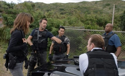 Hawaii Five-0 Shake-Up: Two Added to Cast, One Promoted